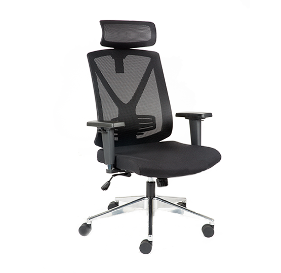 Ativo Ergonomic Office Chair For Conference Room